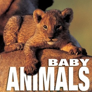 Baby Animals by Angela S. Ildos