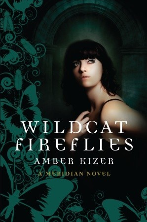 Wildcat Fireflies by Amber Kizer