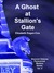 Ghost at Stallions Gate (A Shannon Delaney Paranormal Mystery, #4)