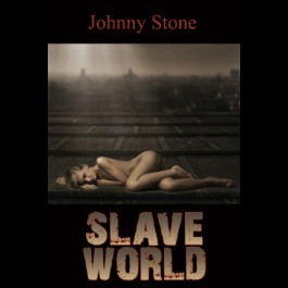 Slave World by Johnny Stone