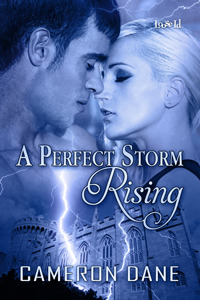 A Perfect Storm Rising by Cameron Dane