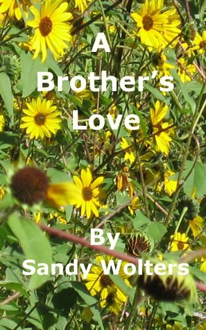 A Brother's Love by Sandy Wolters