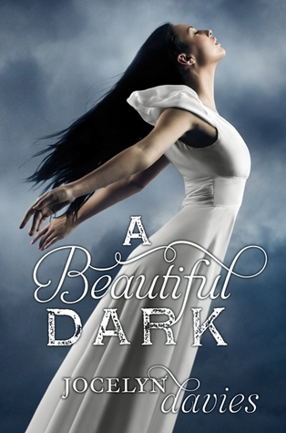 A Beautiful Dark by Jocelyn Davies