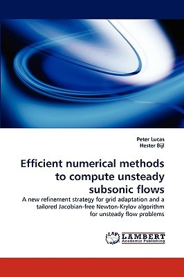 Efficient Numerical Methods to Compute Unsteady Subsonic Flows