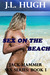 Sex on the Beach (Jack Hamm...