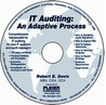 IT Auditing: An Adaptive Process (IT Auditing)