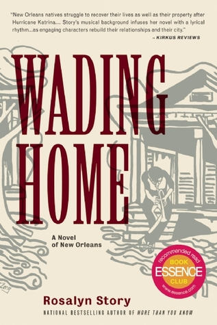 Wading Home by Rosalyn Story
