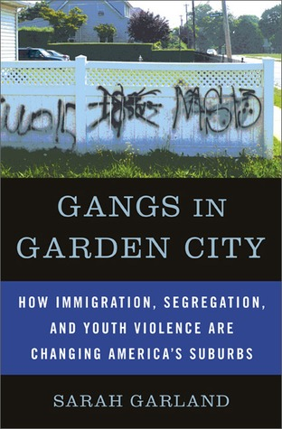 youth gangs an essay review