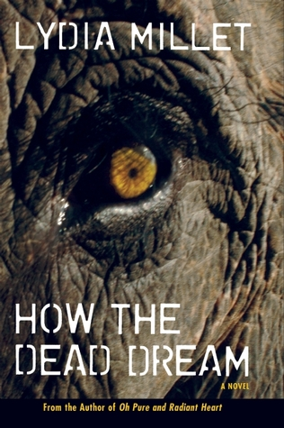 How the Dead Dream by Lydia Millet