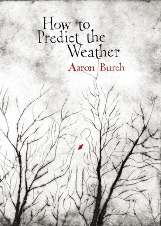 How to Predict the Weather by Aaron Burch
