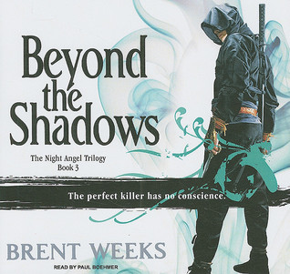 Beyond the Shadows (Night Angel, #3)