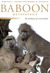 Baboon Metaphysics by Dorothy L. Cheney