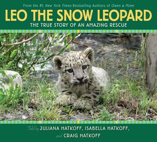 Leo the Snow Leopard by Craig Hatkoff