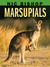 Nic Bishop: Marsupials