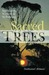Sacred Trees: Spirituality, Wisdom & Well-Being