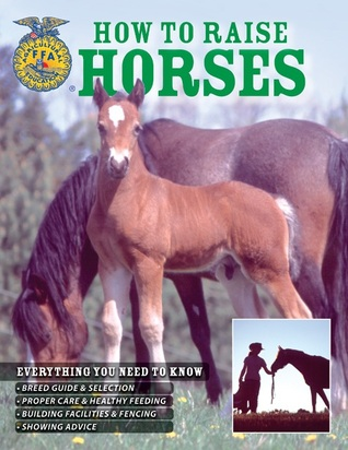 How To Raise Horses: Everything You Need To Know