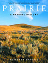 Prairie by Candace Savage