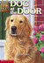 Dog at the Door (Animal Ark...