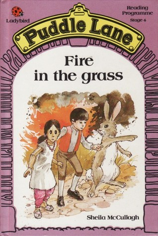 Fire in the Grass by Sheila K. McCullagh