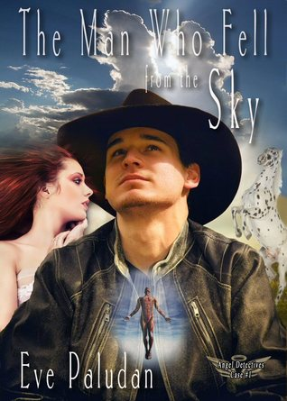 The Man Who Fell From the Sky by Eve Paludan