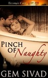 Pinch of Naughty