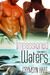 Impassioned Waters (Storm Riders, #3)