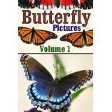 Butterfly Pictures - Volume 1 by G. Alexander