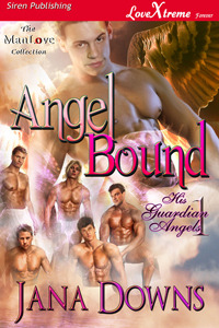 Angel Bound by Jana Downs