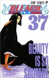 Bleach, Vol. 37: Beauty is so Solitary (Bleach #37)