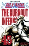 Bleach, Vol. 45: The Burnout Inferno (Bleach #45)
