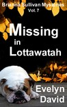 Missing in Lottawatah (Brianna Sullivan Mysteries, #7)