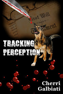 Tracking Perception by Cherri Galbiati