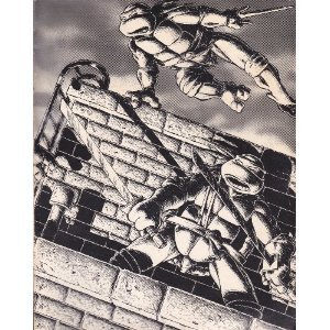 TMNT Collected Book by Kevin Eastman