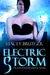 Electric Storm (Raven Investigations, #1)