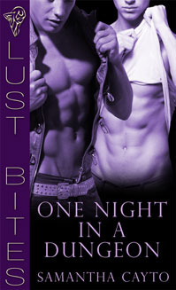 One Night in a Dungeon by Samantha Cayto