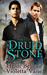 The Druid Stone  (Layers of the Otherworld, #1)