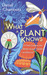 What a Plant Knows: The Hidden Senses of Your Garden - and Beyond