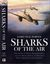 Sharks Of The Air: Willy Messerschmitt And The Development Of History's First Operational Jet Fighter