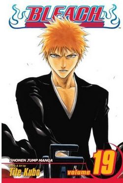 Bleach, Vol. 19 by Tite Kubo