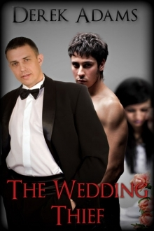 The Wedding Thief by Derek Adams