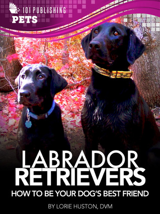 Labrador Retrievers: Guide to Being Your Dog's Best Friend
