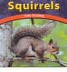Squirrels: Furry Scurriers
