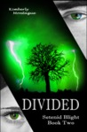Divided (Setenid Blight, #2)
