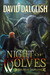 Night of Wolves (The Paladins, #1)