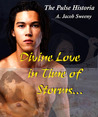 Divine Love in Time of Storms (Pulse Historia #2)