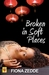 Broken in Soft Places by Fiona Zedde