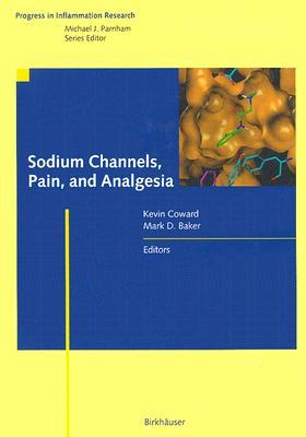 Sodium Channels, Pain, And Analgesia (Progress In Inflammation Research)