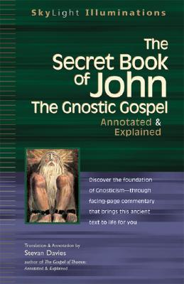 The Secret Book of John by Stevan L. Davies