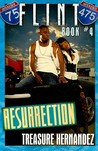 Flint: Resurrection (Flint Series, #4)