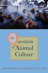 The Question of Animal Culture